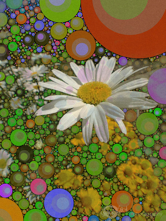 Psychedelic Flowers 06